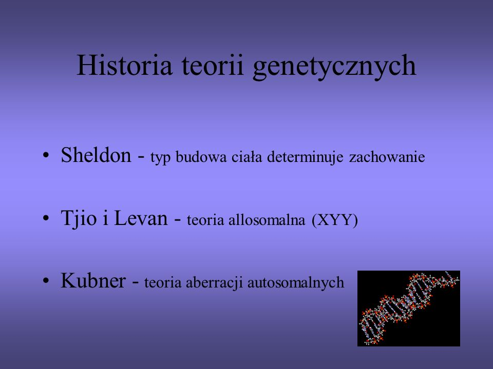 Historia teorii genetycznych Sheldon - typ budowa ciała determinuje zachowanie Tjio i Levan - teoria allosomalna (XYY) Kubner - teoria aberracji autos