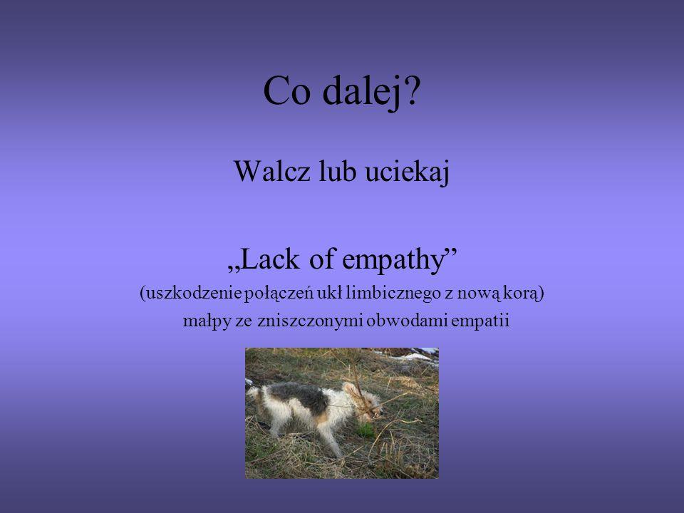 Co dalej? Walcz lub uciekaj Lack of empathy (uszkodzenie połączeń ukł limbicznego z nową korą) małpy ze zniszczonymi obwodami empatii
