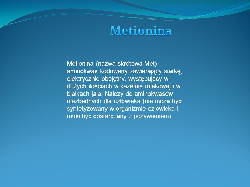 Metionina (nazwa skrótowa Met) - aminokwas kodowany zawierający siarkę, elektrycznie obojętny, występujacy w dużych ilościach w kazeinie mlekowej i w białkach jaja.
