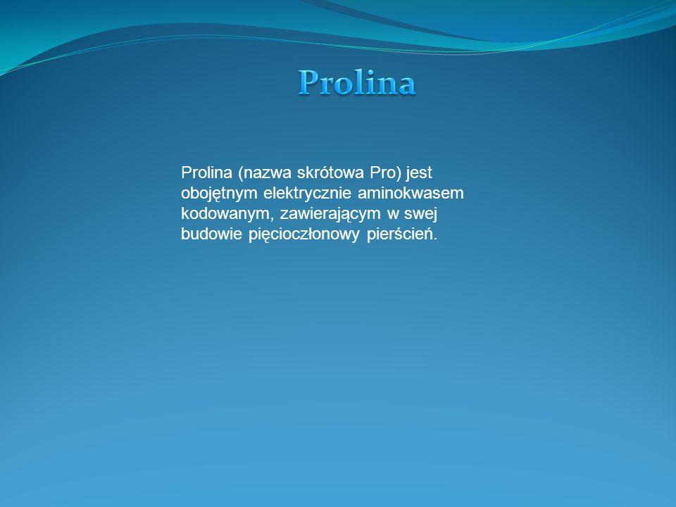 Prolina (nazwa skrótowa Pro) jest obojętnym elektrycznie aminokwasem kodowanym, zawierającym w swej budowie pięcioczłonowy pierścień.