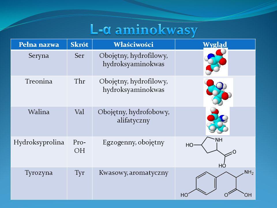 Pełna nazwaSkrótWłaściwościWygląd TryptofanTrypZasadowy, aromatyczny HydroksylizynaLys- OH Obojętny, aromatyczny