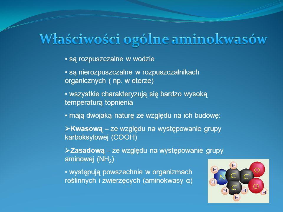 Wyróżniamy trzy typy reakcji aminokwasów.