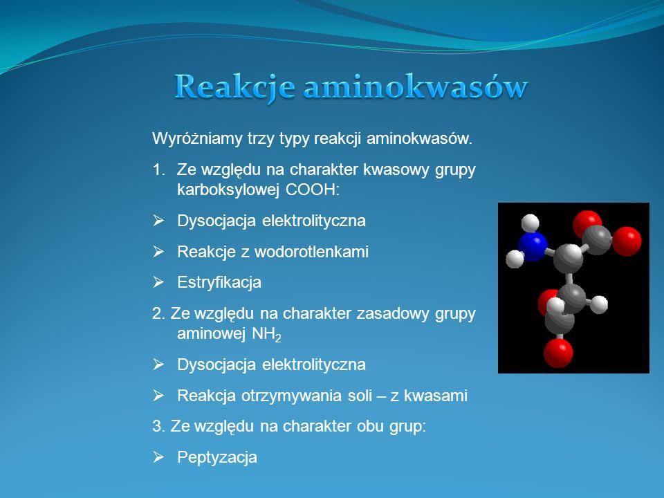 Aminokwasy można podzielić na dwa sposoby: 1.Ze względu na usytuowanie grupy aminowej względem węgla w cząsteczce aminokwasu: Aminokwasy α – grupa aminowa przy pierwszym węglu od strony grupy karboksylowej Aminokwasy β – grupa aminowa przy drugim węglu.
