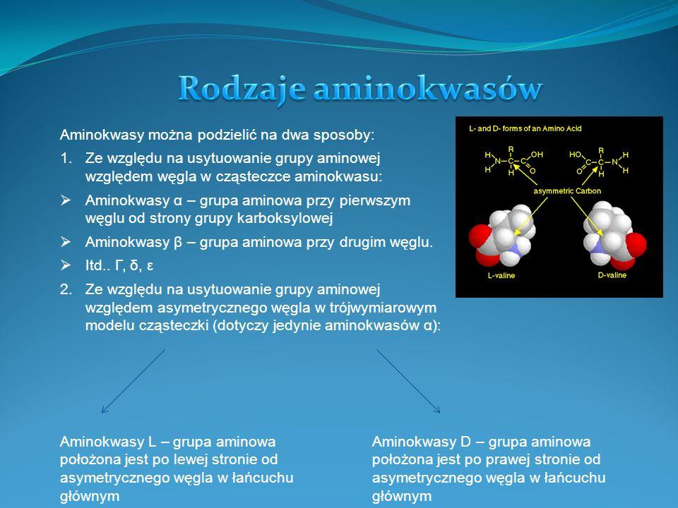 W organizmach żywych spotykane są jedynie aminokwasy α.