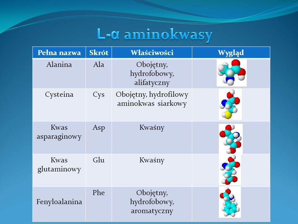 Pełna nazwaSkrótWłaściwościWygląd GlicynaGlyObojętny, hydrofilowy HistydynaHisZasadowy IzoleucynaIleObojętny, hydrofobowy, alifatyczny LizyaLysZasadowy LeucynaLeuObojętny, hydrofobowy, alifatyczny