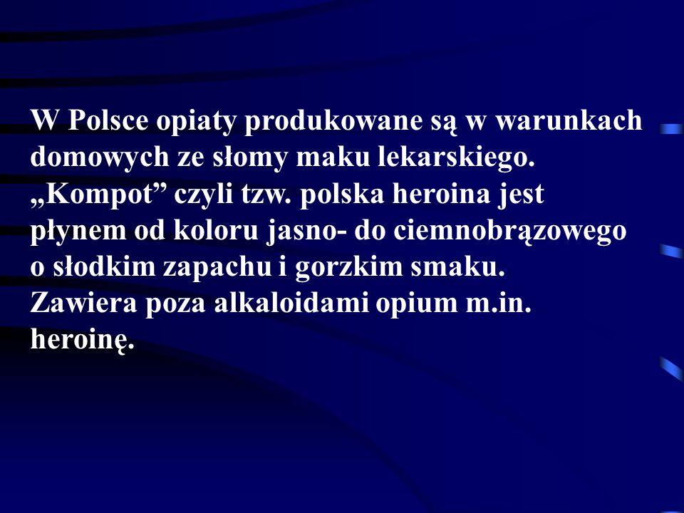 W Polsce opiaty produkowane są w warunkach domowych ze słomy maku lekarskiego.