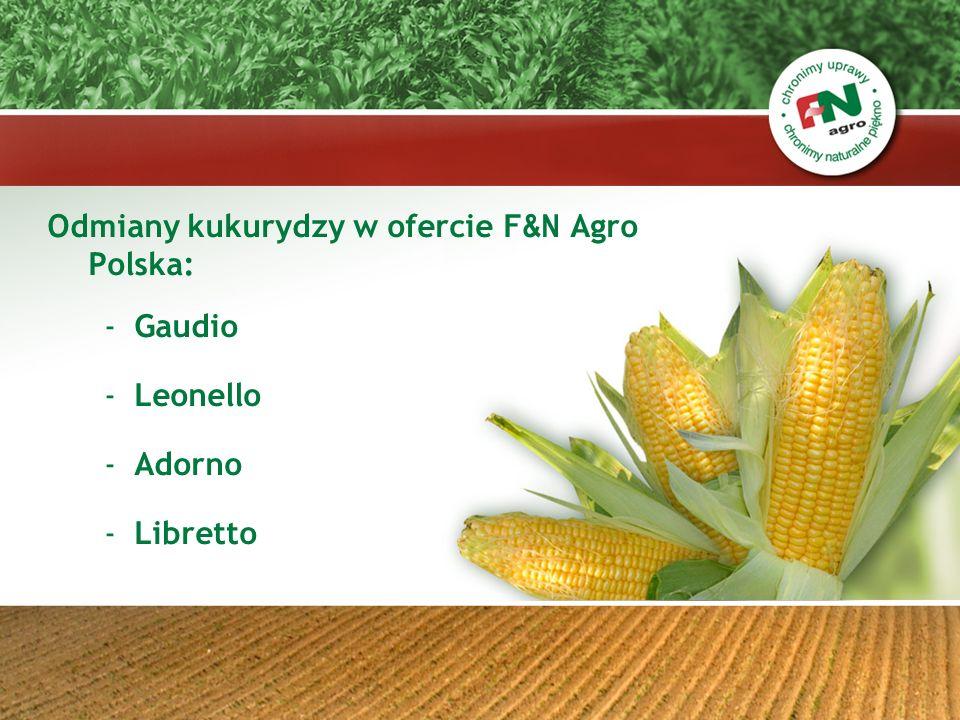ADORNO – FAO 280 Charakterystyka cd: - wysokość roślin : średnia - odporność na wyleganie: bardzo wysoka - odporność na Fuzarium: wysoka - odporność na Głownie: wysoka