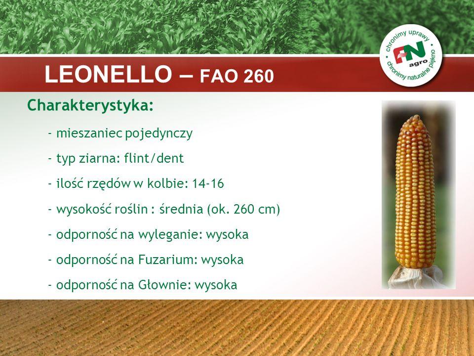 Stawność materii organicznej badania IN VITRO w %, źródło: UKZUZ 2004-2006 LEONELLO – FAO 260