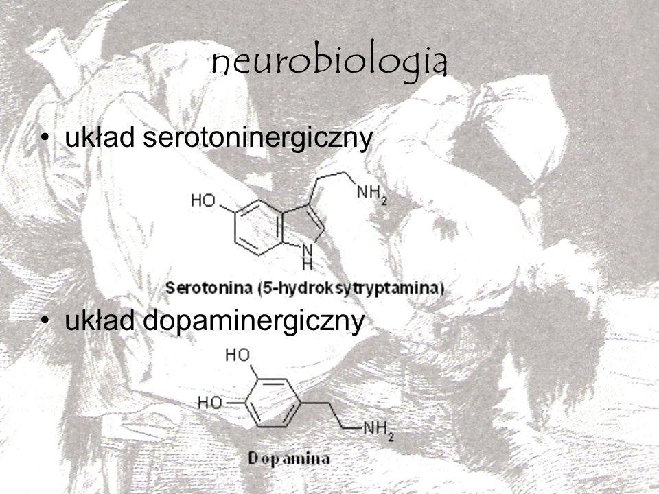 neurobiologia układ serotoninergiczny układ dopaminergiczny