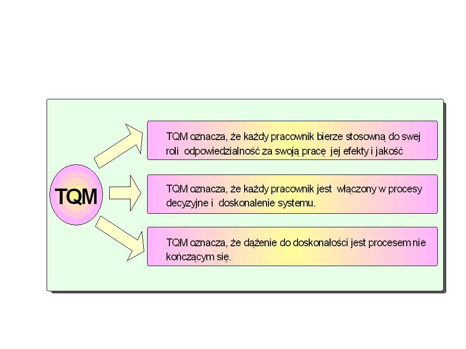 Total Total - każda osoba w firmie jest zaangażowana na rzecz szeroko rozumianej jakości (jeśli to tylko możliwe również klienci i dostawcy), Quality