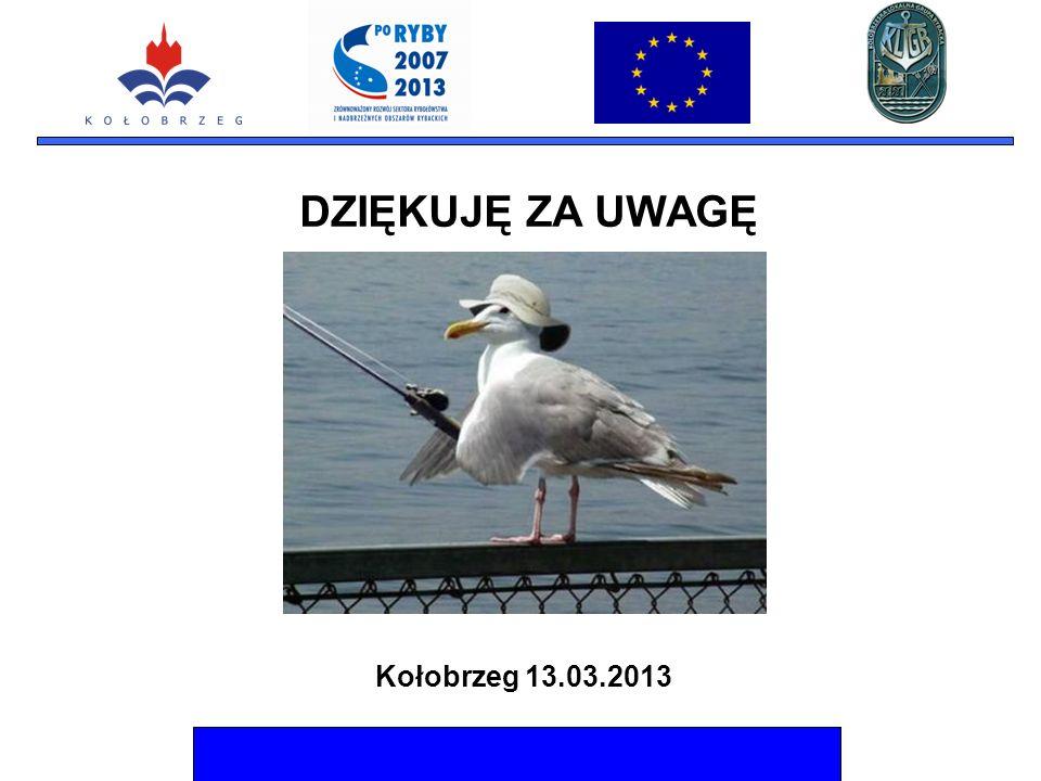 Kołobrzeg 13.03.2013 DZIĘKUJĘ ZA UWAGĘ