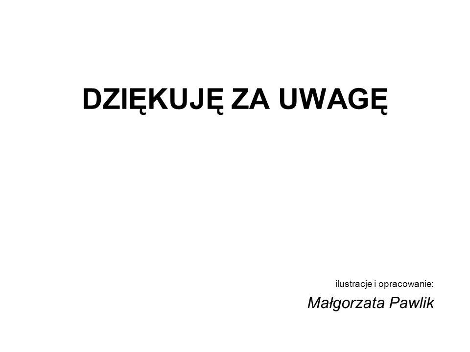 ilustracje i opracowanie: Małgorzata Pawlik DZIĘKUJĘ ZA UWAGĘ