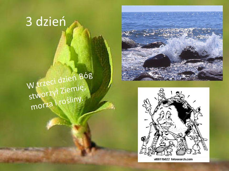 3 dzień W trzeci dzień Bóg stworzył Ziemię, morza i rośliny.