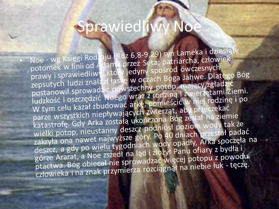 Sprawiedliwy Noe Noe - wg Księgi Rodzaju (Rdz 6,8-9,29) syn Lameka i dziesiąty potomek w linii od Adama przez Seta; patriarcha, człowiek prawy i sprawiedliwy, który jedyny spośród ówczesnych zepsutych ludzi znalazł łaskę w oczach Boga Jahwe.