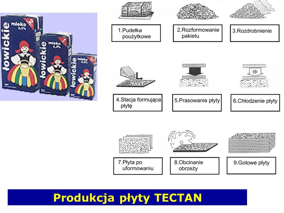 Produkcja płyty TECTAN