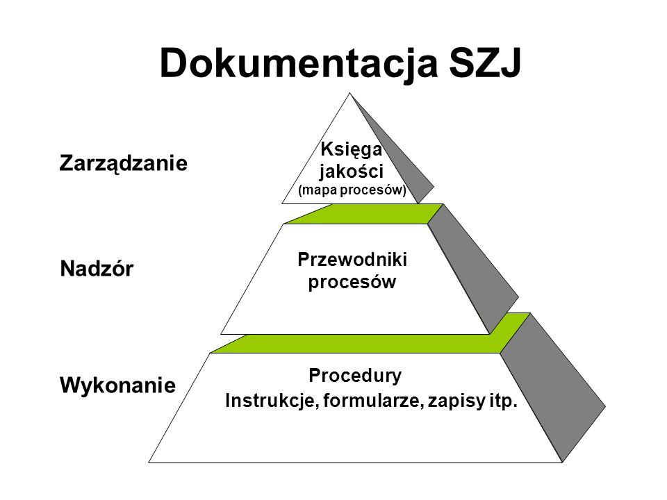 Zarządzanie Nadzór Wykonanie Procedury Instrukcje, formularze, zapisy itp.