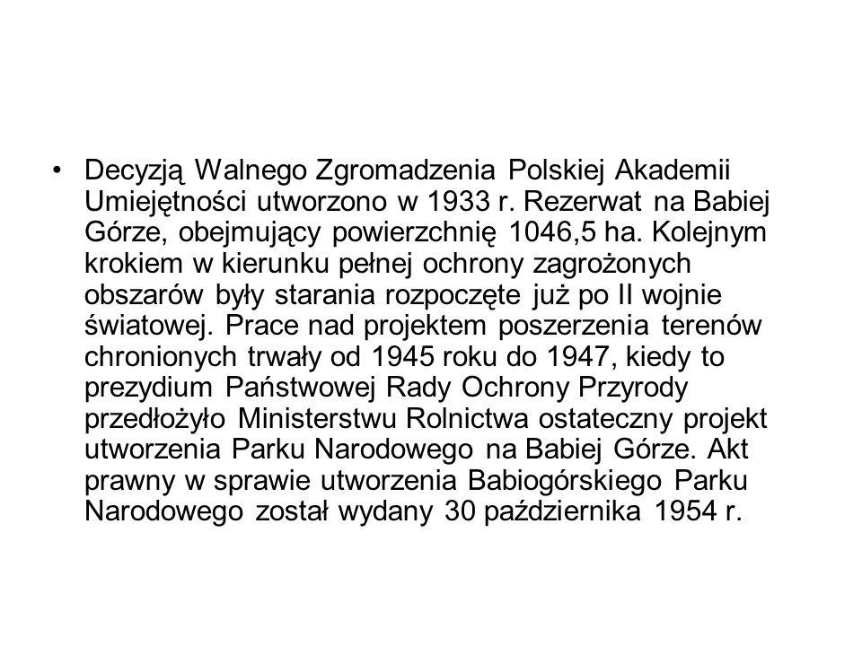 Decyzją Walnego Zgromadzenia Polskiej Akademii Umiejętności utworzono w 1933 r. Rezerwat na Babiej Górze, obejmujący powierzchnię 1046,5 ha. Kolejnym