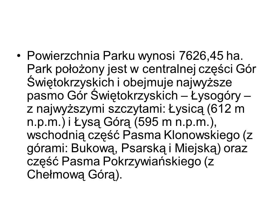 Powierzchnia Parku wynosi 7626,45 ha. Park położony jest w centralnej części Gór Świętokrzyskich i obejmuje najwyższe pasmo Gór Świętokrzyskich – Łyso