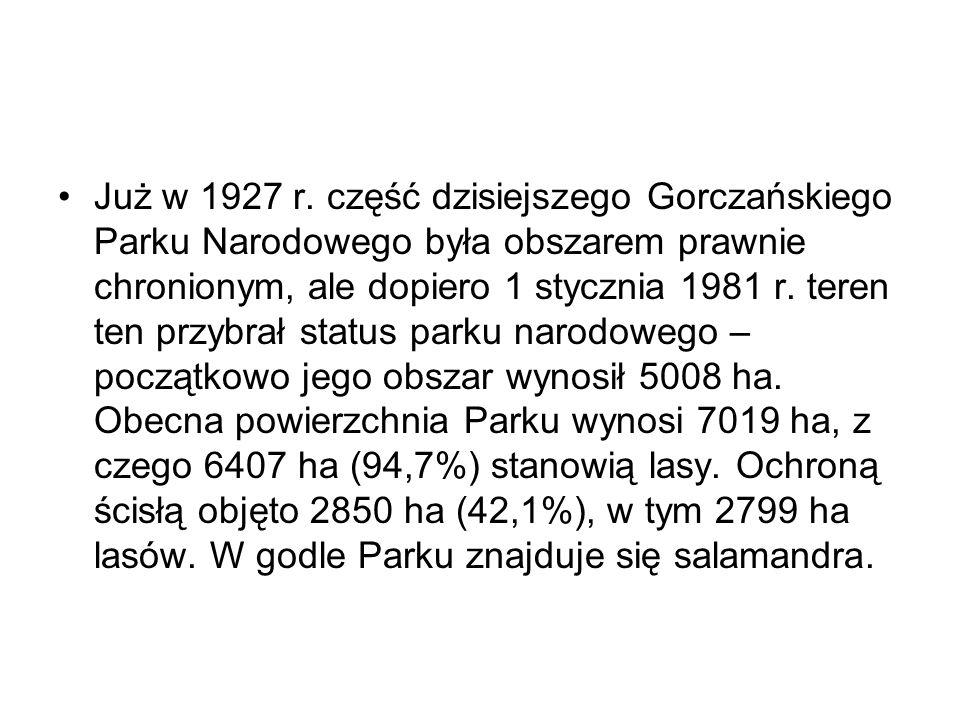 Już w 1927 r. część dzisiejszego Gorczańskiego Parku Narodowego była obszarem prawnie chronionym, ale dopiero 1 stycznia 1981 r. teren ten przybrał st