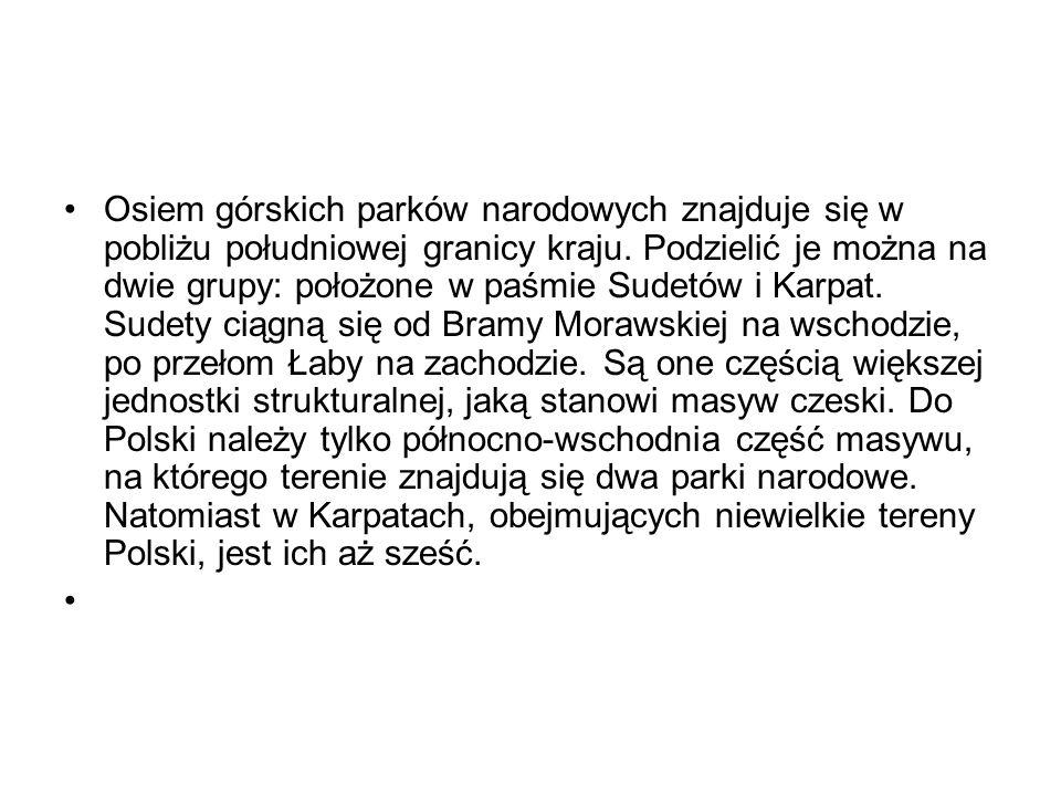 · Regiel górny (1150-1390 m n.p.m.) – stanowi go bór świerkowy.