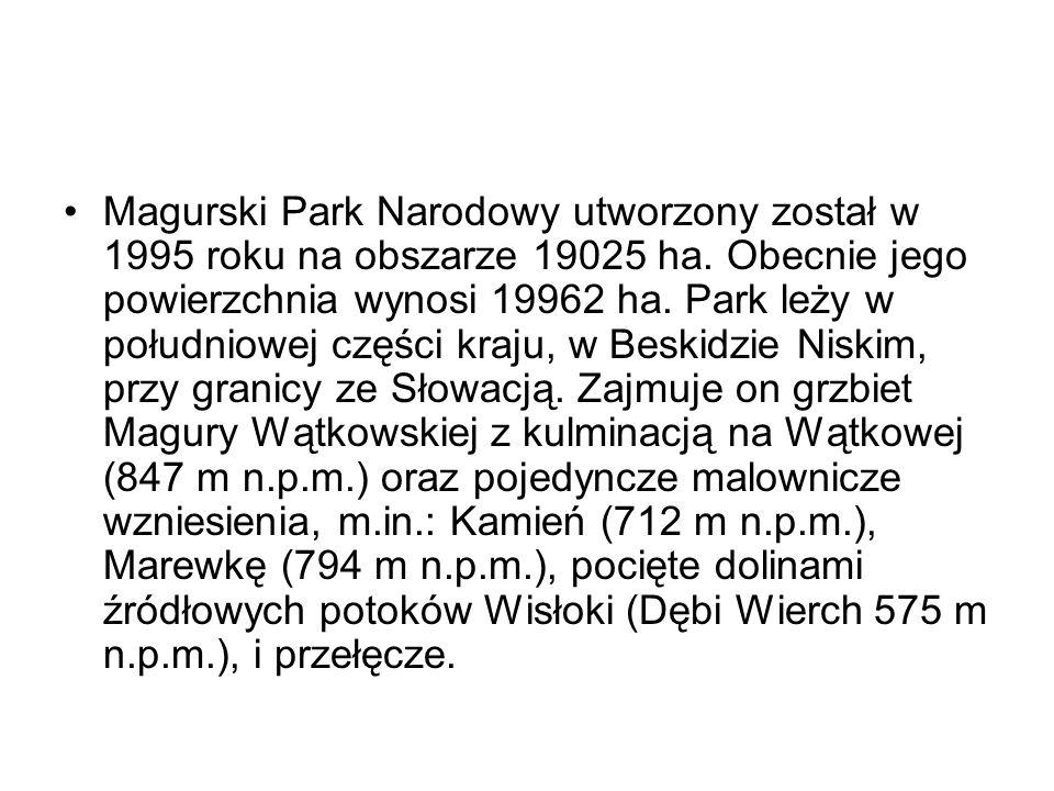 Magurski Park Narodowy utworzony został w 1995 roku na obszarze 19025 ha. Obecnie jego powierzchnia wynosi 19962 ha. Park leży w południowej części kr