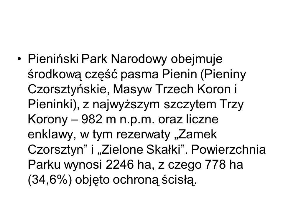 Pieniński Park Narodowy obejmuje środkową część pasma Pienin (Pieniny Czorsztyńskie, Masyw Trzech Koron i Pieninki), z najwyższym szczytem Trzy Korony