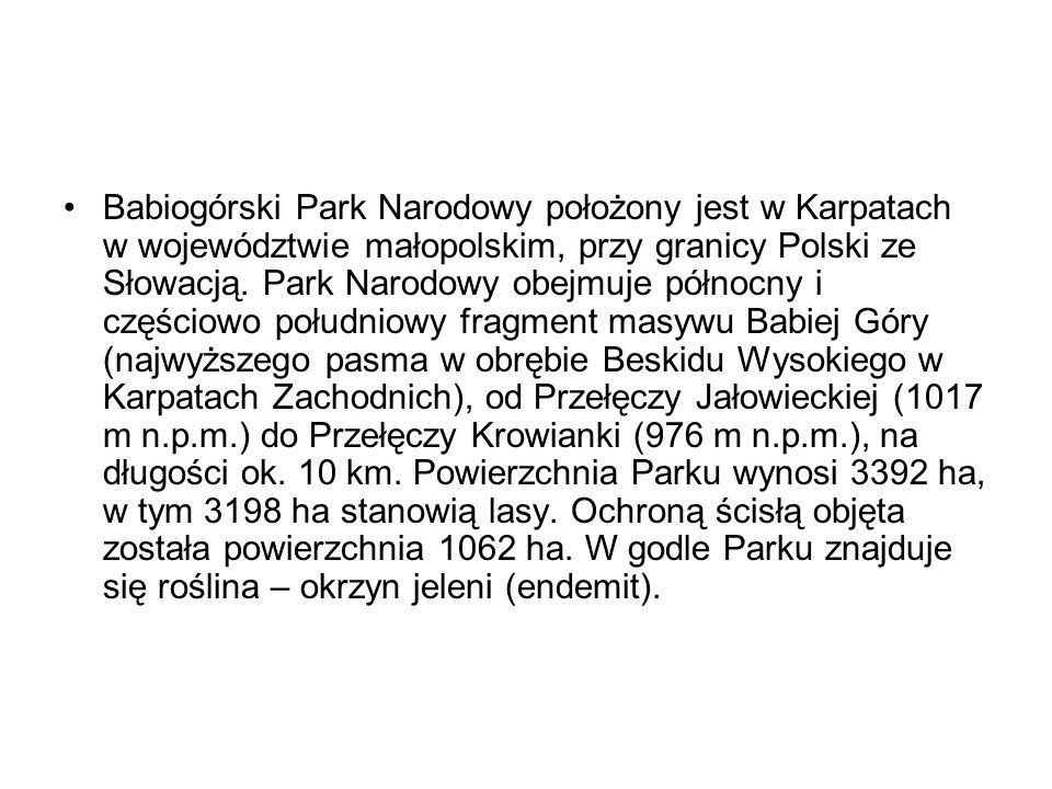 Babiogórski Park Narodowy położony jest w Karpatach w województwie małopolskim, przy granicy Polski ze Słowacją. Park Narodowy obejmuje północny i czę