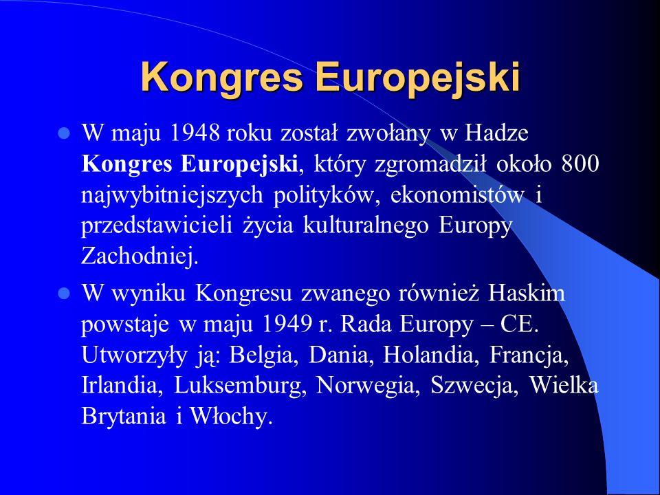 Rada Europy Była pierwszym przedsięwzięciem instytucjonalnym, które w przyszłości miało doprowadzić do jakiejś formy ponadnarodowego rządu Europy.