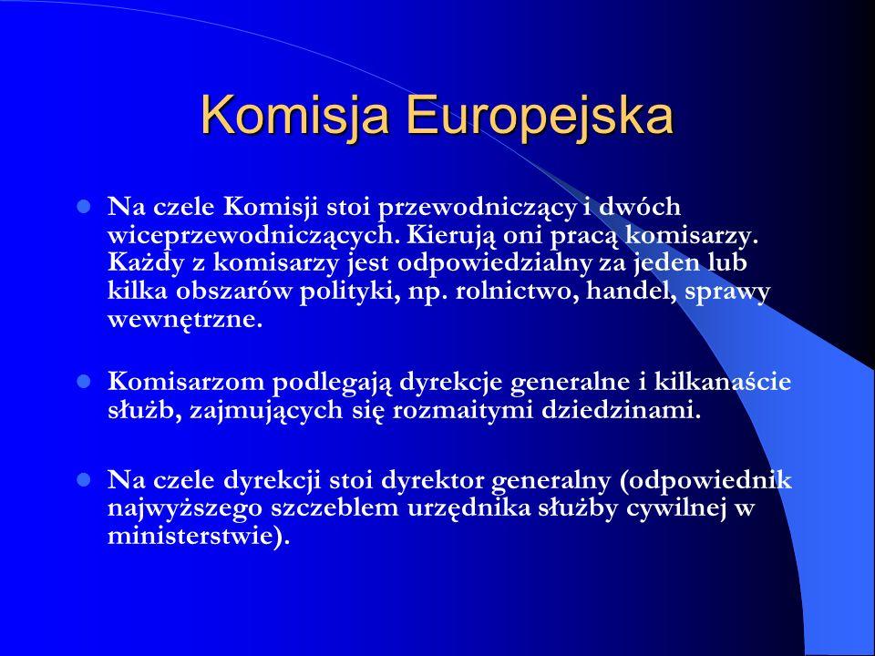 Komisja Europejska Na czele Komisji stoi przewodniczący i dwóch wiceprzewodniczących. Kierują oni pracą komisarzy. Każdy z komisarzy jest odpowiedzial