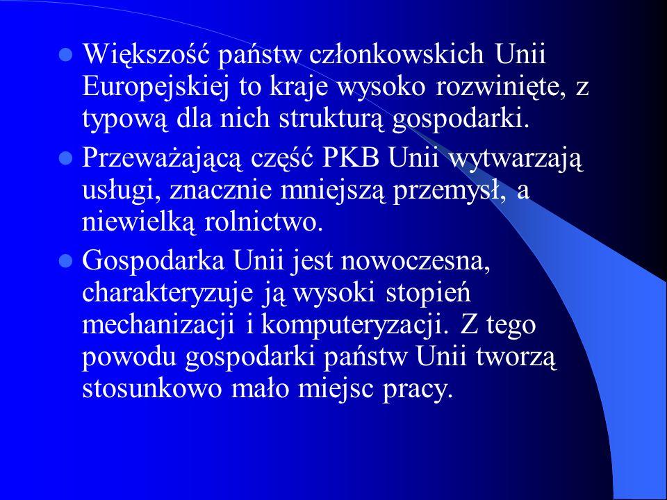 Większość państw członkowskich Unii Europejskiej to kraje wysoko rozwinięte, z typową dla nich strukturą gospodarki. Przeważającą część PKB Unii wytwa