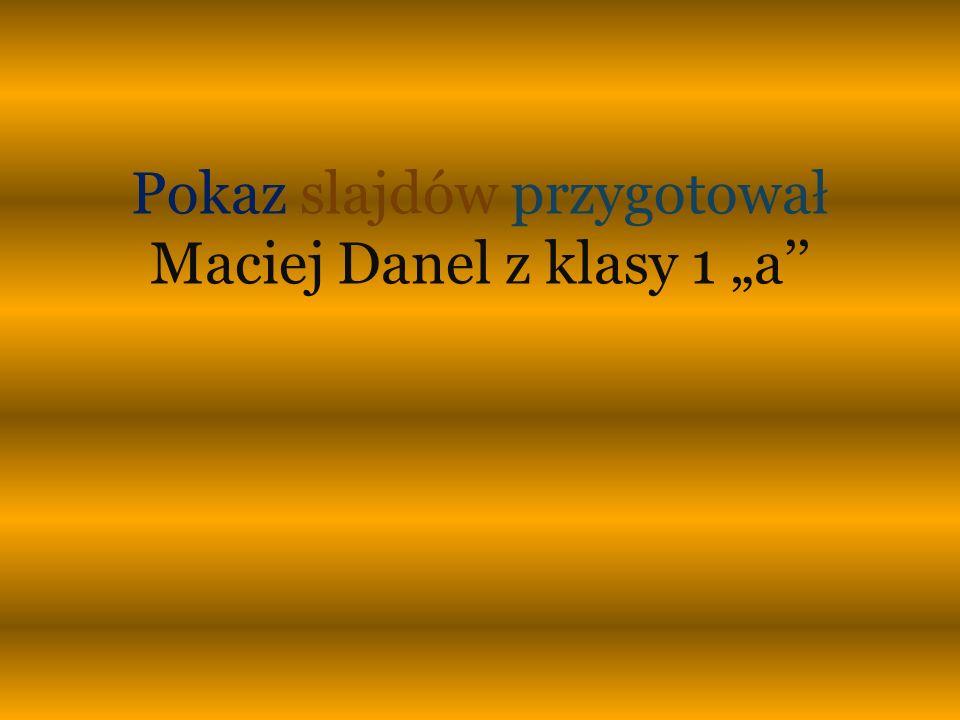 Pokaz slajdów przygotował Maciej Danel z klasy 1 a