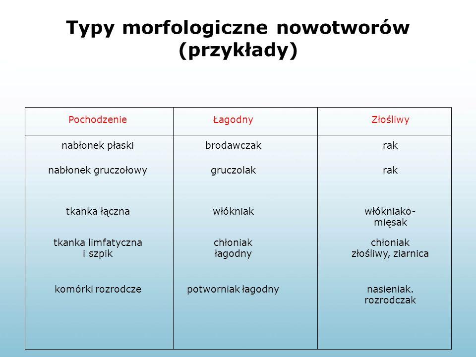 Typy morfologiczne nowotworów (przykłady) PochodzenieŁagodnyZłośliwy nabłonek płaskibrodawczakrak nabłonek gruczołowygruczolakrak tkanka łącznawłóknia