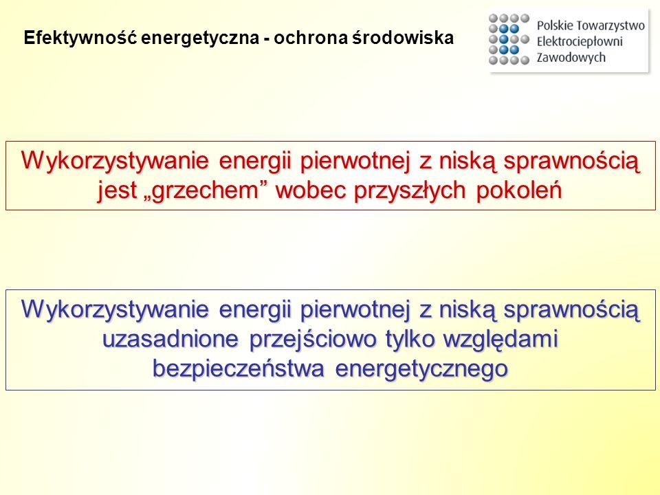 Wykorzystywanie energii pierwotnej z niską sprawnością jest grzechem wobec przyszłych pokoleń Wykorzystywanie energii pierwotnej z niską sprawnością u