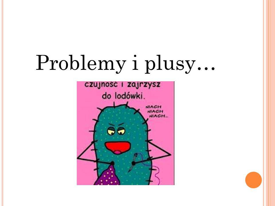 Problemy i plusy…