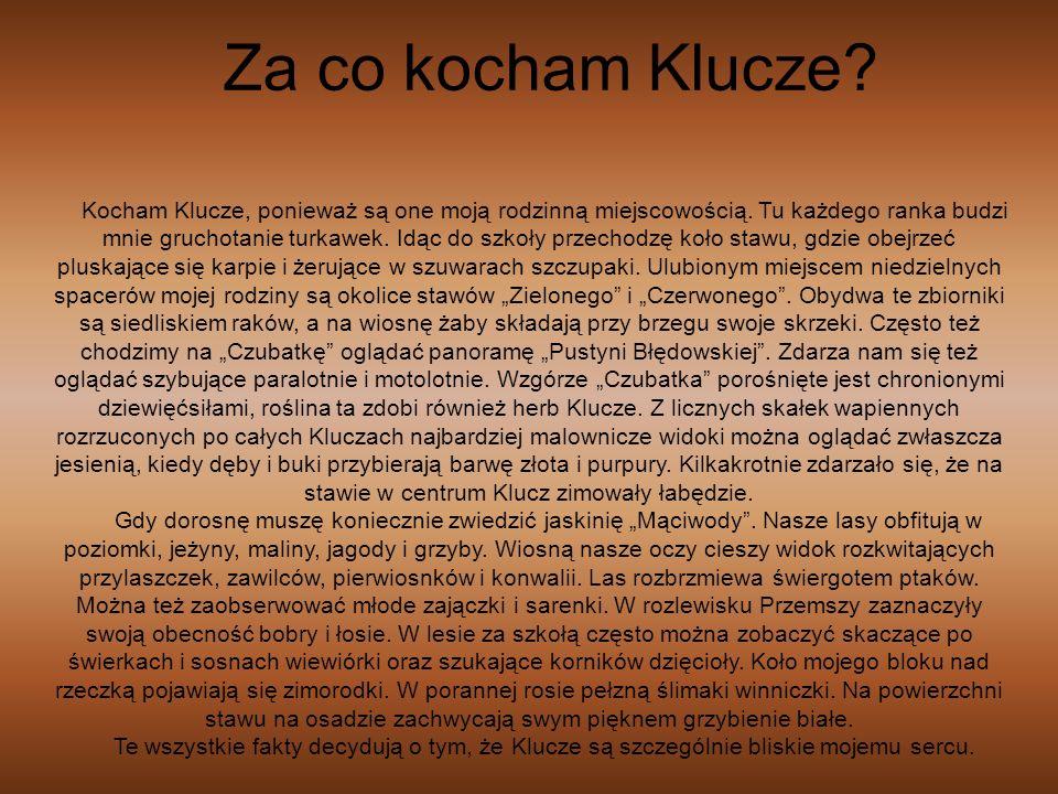 Kocham Klucze, ponieważ są one moją rodzinną miejscowością. Tu każdego ranka budzi mnie gruchotanie turkawek. Idąc do szkoły przechodzę koło stawu, gd
