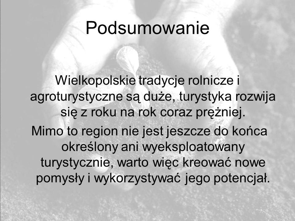 Podsumowanie Wielkopolskie tradycje rolnicze i agroturystyczne są duże, turystyka rozwija się z roku na rok coraz prężniej. Mimo to region nie jest je