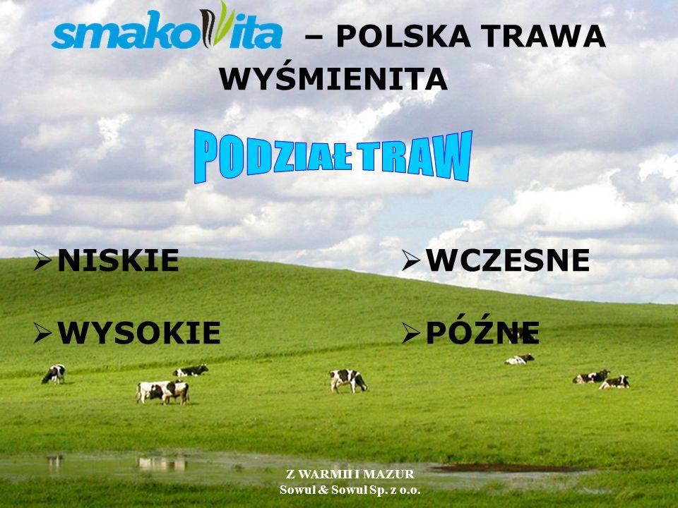 – POLSKA TRAWA WYŚMIENITA NISKIE WYSOKIE WCZESNE PÓŹNE Z WARMII I MAZUR Sowul & Sowul Sp. z o.o.