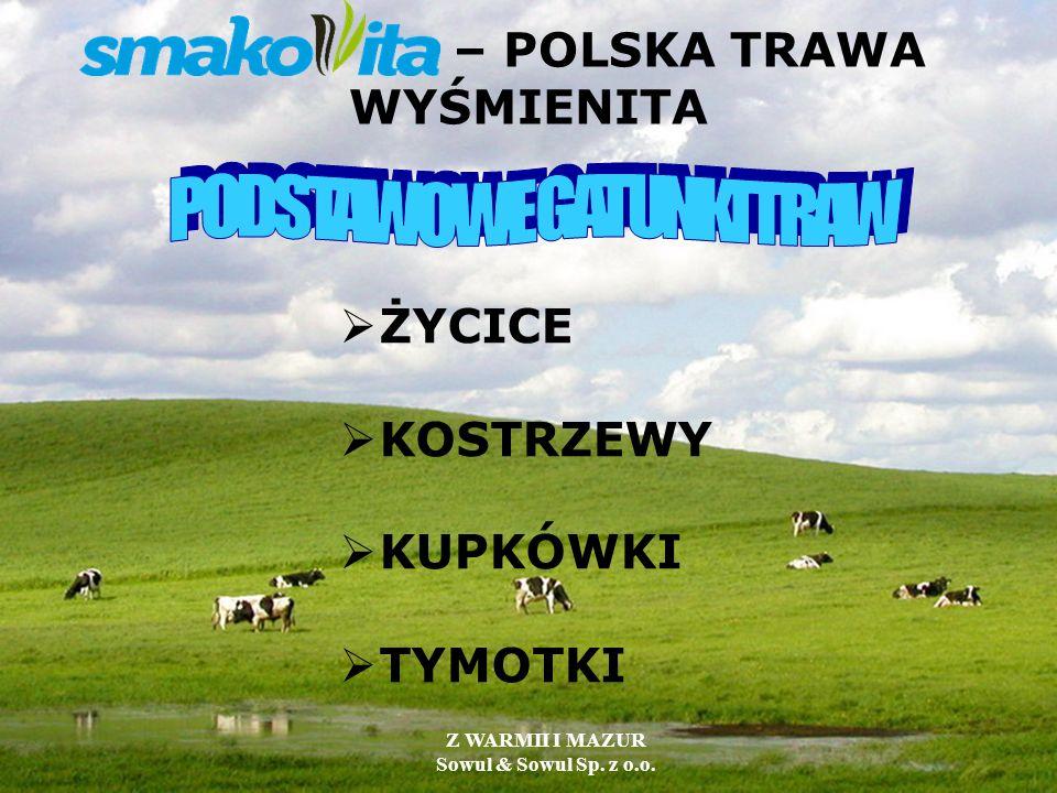 – POLSKA TRAWA WYŚMIENITA ŻYCICE KOSTRZEWY KUPKÓWKI TYMOTKI Z WARMII I MAZUR Sowul & Sowul Sp. z o.o.