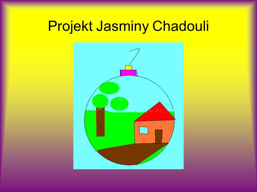 Projekt Jasminy Chadouli