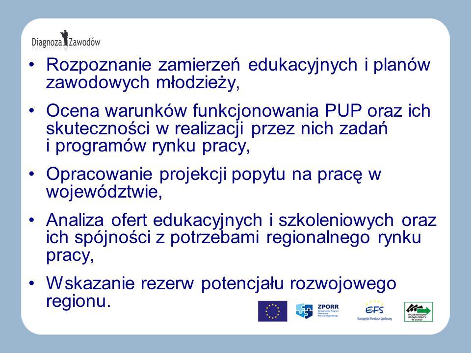 Rozpoznanie zamierzeń edukacyjnych i planów zawodowych młodzieży, Ocena warunków funkcjonowania PUP oraz ich skuteczności w realizacji przez nich zada