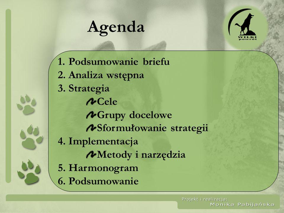 Agenda 1.Podsumowanie briefu 2.Analiza wstępna 3.Strategia Cele Grupy docelowe Sformułowanie strategii 4. Implementacja Metody i narzędzia 5. Harmonog