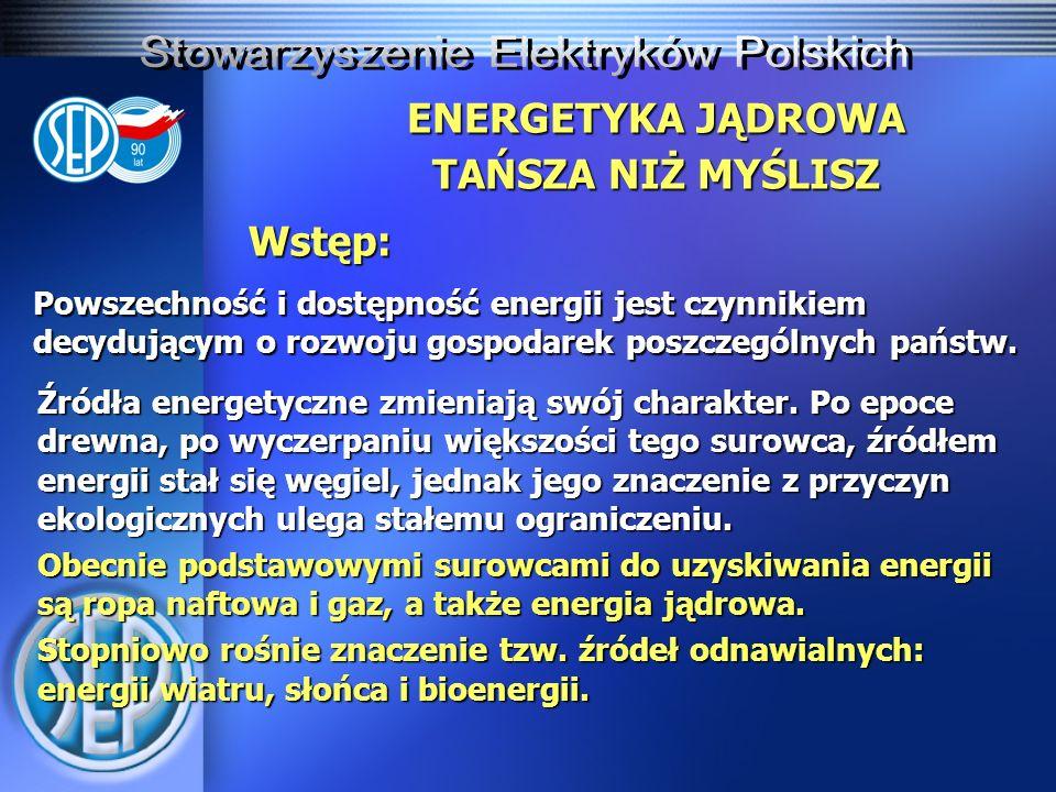 ENERGETYKA JĄDROWA TAŃSZA NIŻ MYŚLISZ Zakres działalności Stowarzyszenia Elektryków Polskich, zgodnie ze statutem, obejmuje szeroko rozumianą elektrykę, w tym elektroenergetykę.