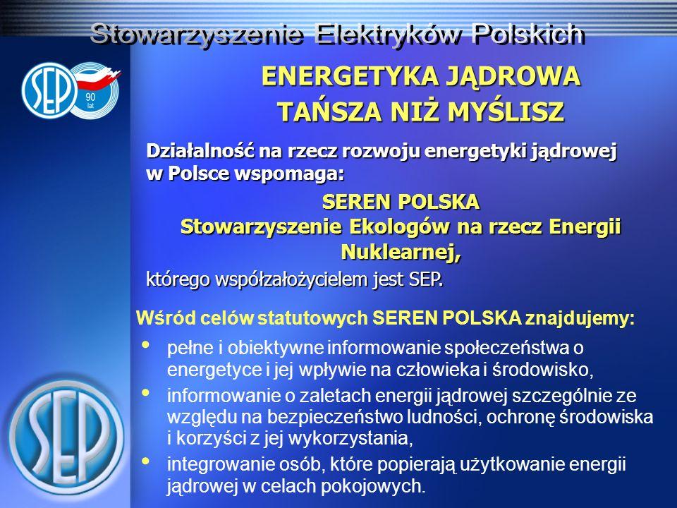ENERGETYKA JĄDROWA TAŃSZA NIŻ MYŚLISZ Działalność na rzecz rozwoju energetyki jądrowej w Polsce wspomaga: SEREN POLSKA Stowarzyszenie Ekologów na rzec