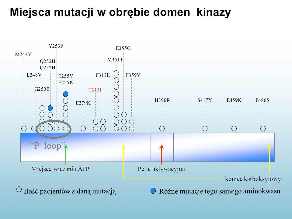 Miejsca mutacji w obrębie domen kinazy Miejsce wiązania ATPPętla aktywacyjna koniec karboksylowy T315I E255V E255K M244V G250E M351T L248V Y253F E279K