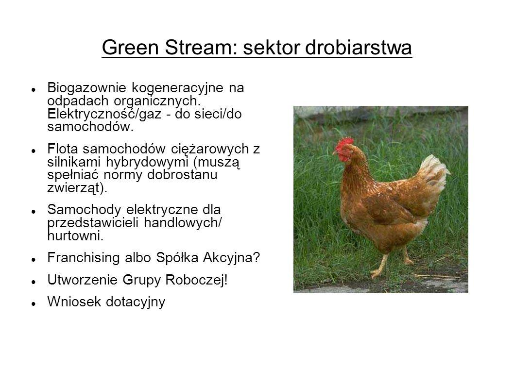 Green Stream: sektor drobiarstwa Biogazownie kogeneracyjne na odpadach organicznych.