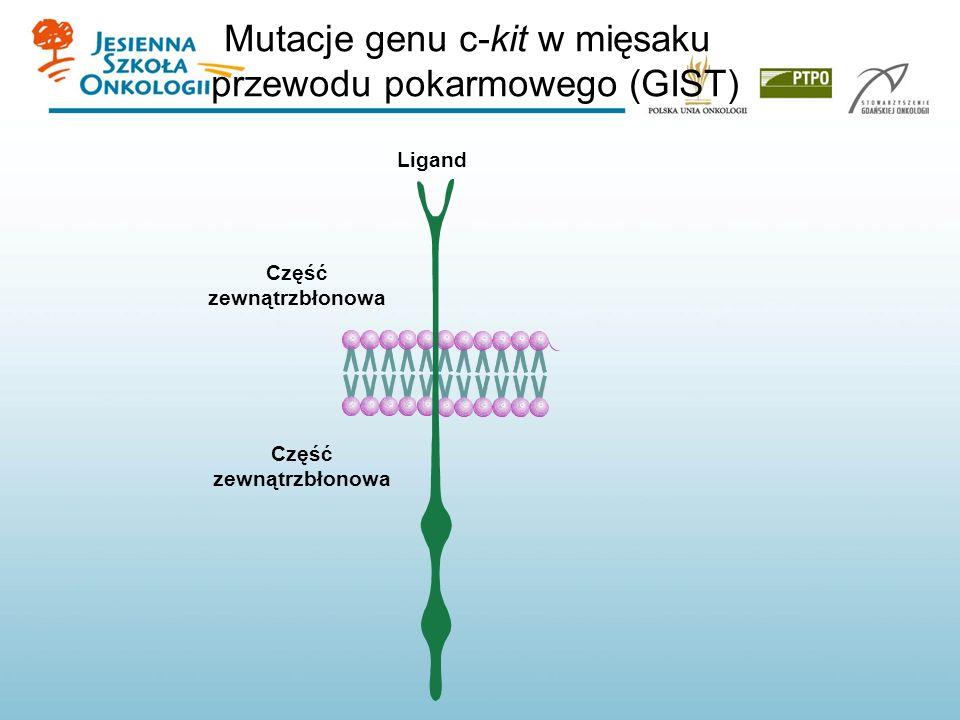 Mutacje genu c-kit w mięsaku przewodu pokarmowego (GIST) Część zewnątrzbłonowa Ligand