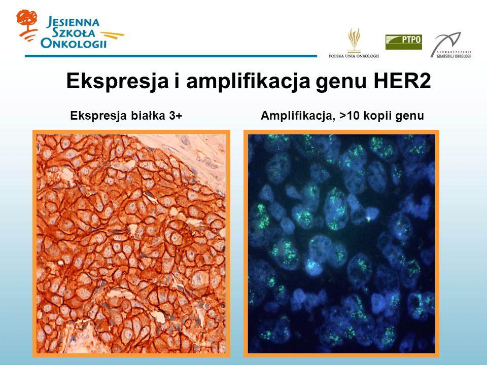Ekspresja białka 3+Amplifikacja, >10 kopii genu Ekspresja i amplifikacja genu HER2