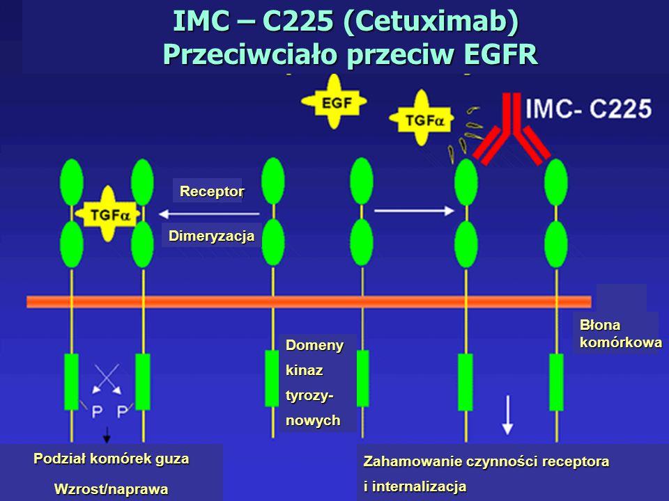 IMC – C225 (Cetuximab) Przeciwciało przeciw EGFR Dimeryzacja Receptor Błona komórkowa Zahamowanie czynności receptora i internalizacja Podział komórek guza Wzrost/naprawa Domenykinaztyrozy-nowych