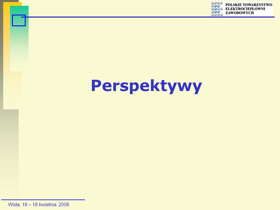 Wisła, 16 – 18 kwietnia 2008 Perspektywy