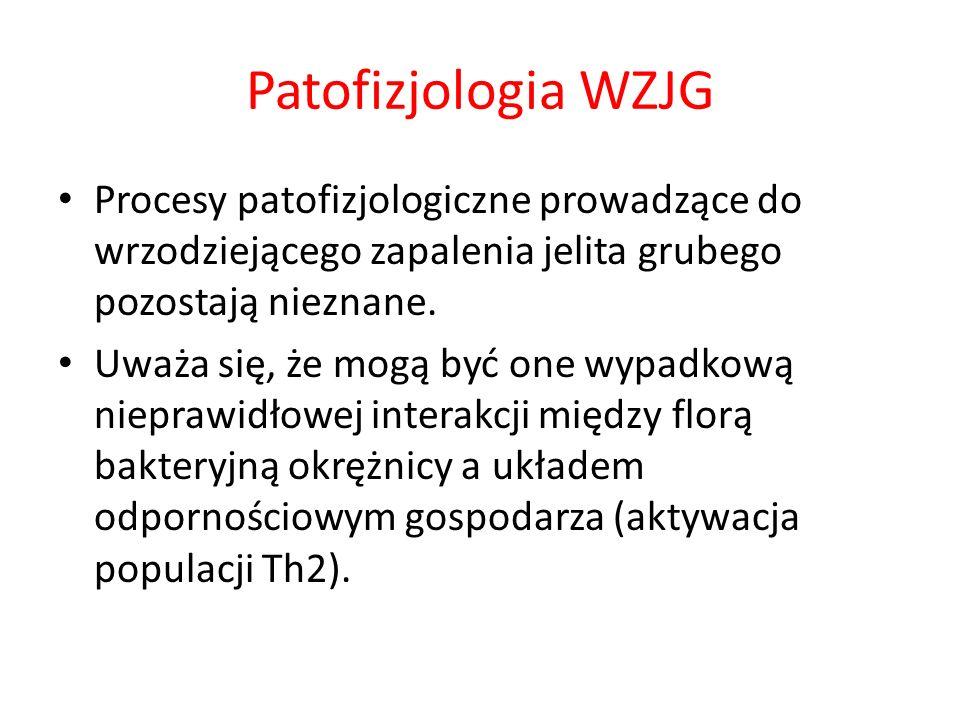 Patofizjologia WZJG Procesy patofizjologiczne prowadzące do wrzodziejącego zapalenia jelita grubego pozostają nieznane. Uważa się, że mogą być one wyp